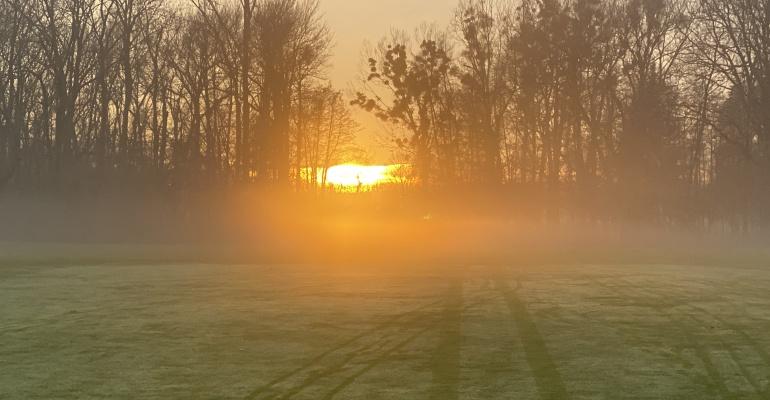 Nebel im Kopf-Novembernebel
